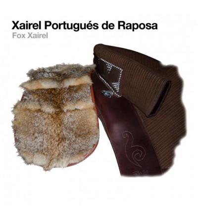 Xairel Portugués de Raposa
