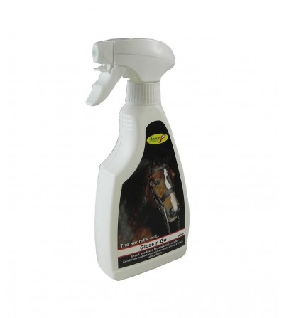 Gloss and Go - Abrillantador 500ml