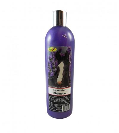 Champú - Acondicionador Lavender
