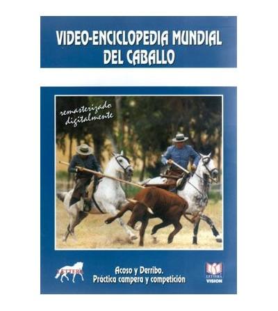 Dvd: Acoso Y Derribo 2