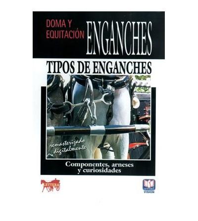 Dvd: Componentes Arneses y Curiosidades