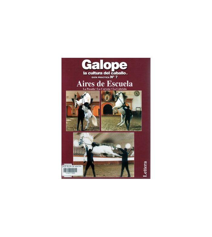 Libro: Guía de Escuela Nº7