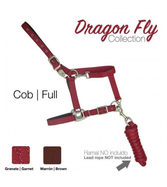 Cabezada de Cuadra Dragon Fly