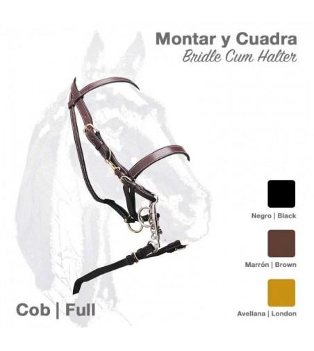 Cabezada Cuadra-Montar con Riendas 1592