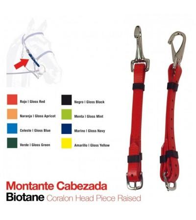 Montante para Cabezada de Biothane