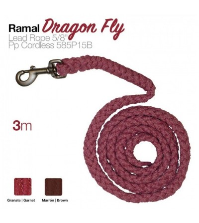 Ramal Dragon Fly