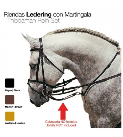 Riendas Ledering con Martingala 1814