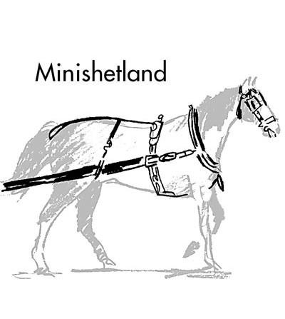 Enganche a la Inglesa con Collera Mini-Shetland