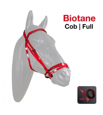 Cabezada Montar Biotane 302