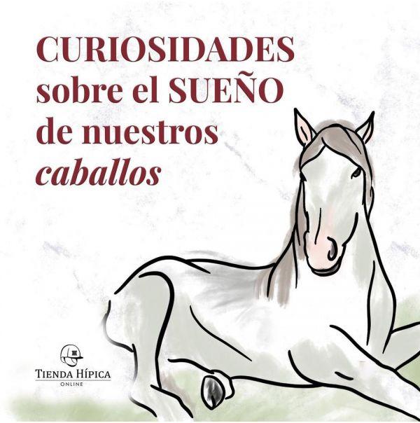 El sueño del caballo