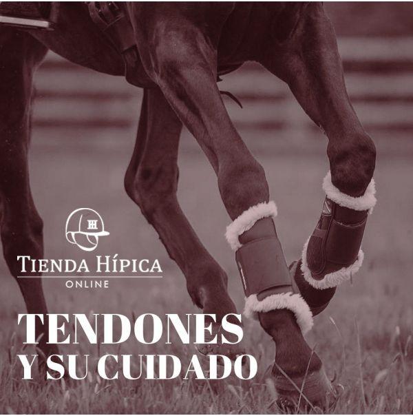 Cuidado de los tendones